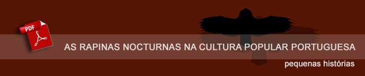 rapi noct cult pop_banner